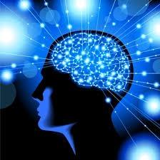 inside of a mind